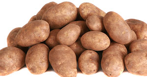 Russet Potatoes Storage Crop Image